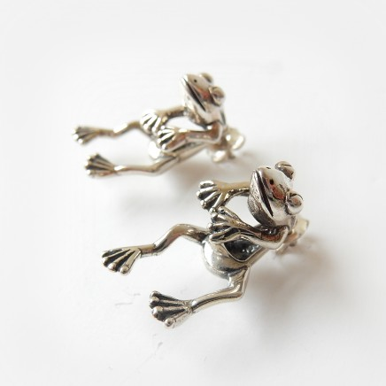 Photo of Solid Silver Novelty Frog Earrings